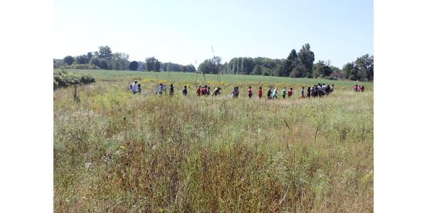 Kids test new pollinator education trail