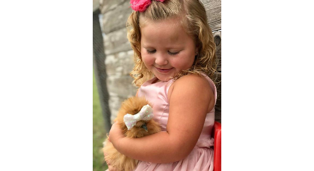 Texas hen a finalist in nationwide contest