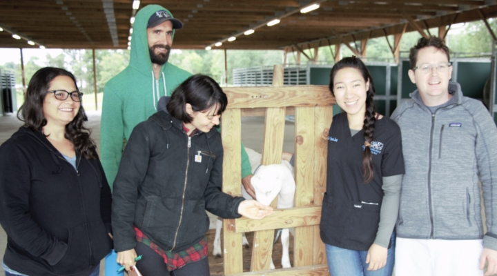 Seminar held for goat and sheep producers