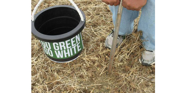 There are several advantages to test your soil in the fall. (Photo by George Silva, MSU Extension)