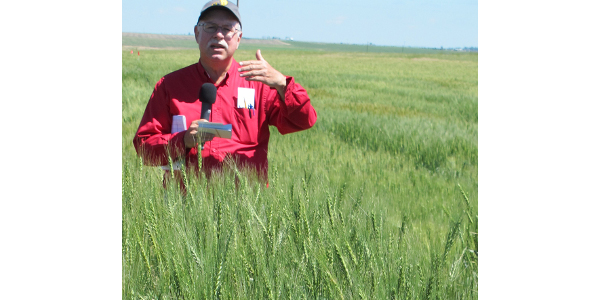 Update on wheat varieties for Nebraska