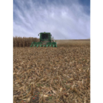 As combines pop up in fields across the Midwest, the Nebraska Corn Board and Nebraska Corn Growers Association encourage farmers, as well as local residents and visitors, to take a second for safety in rural areas this harvest season. (Courtesy of Nebraska Corn Board)