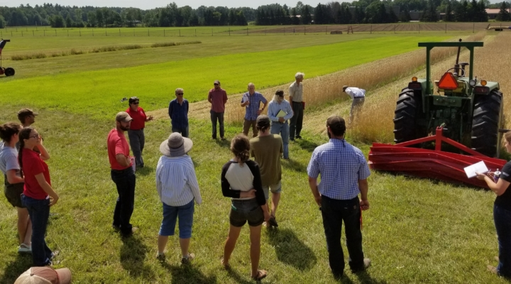 Field meeting to highlight new vegetable research