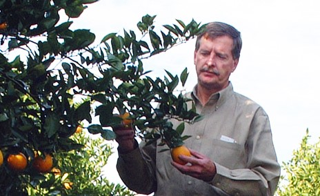A day in the life of a UF/IFAS Citrus Agent