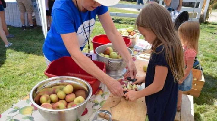 Hands-on harvest at Remick Museum & Farm