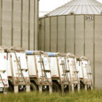 On-farm and commercial storage are two options available for Missouri farmers. Depending on the dealer class, commercial elevators may offer storage only or delayed price options. (Courtesy of Missouri Department of Agriculture)
