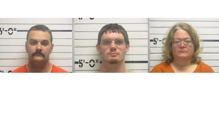 Arrests made in Creek County cattle theft