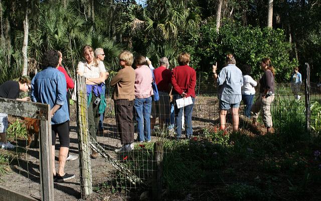 Celebrate 40 Years of the UConn Extension Master Gardener Program