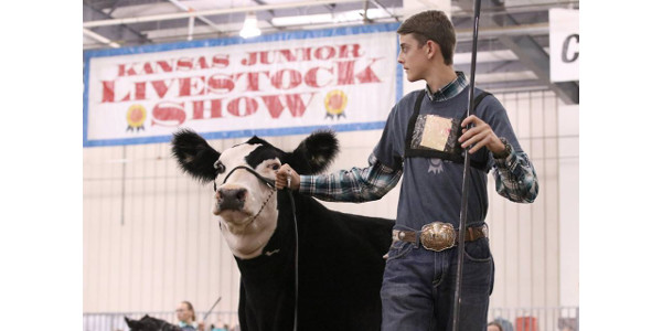 The largest youth livestock show in Kansas featured 723 4-H and FFA members from 91 counties exhibiting 1,519 head of livestock. (Courtesy of Kansas Junior Livestock Show via Facebook)