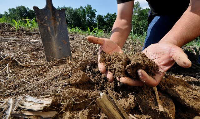 Fall is a good time to get your soil tested!