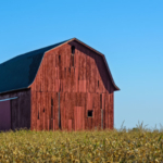 Farm income has now been in general decline for 4 years and seems to be headed for a fifth in 2019. (Photo: Adobe Stock)