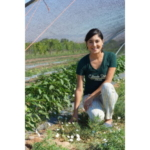 Aisha Martinek working firsthand in the field for research. (Courtesy of CSU Extension)