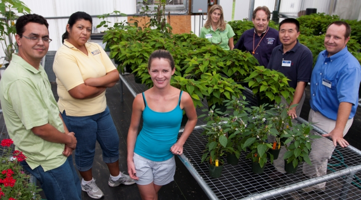 Celebrating 50 years of keeping Florida green
