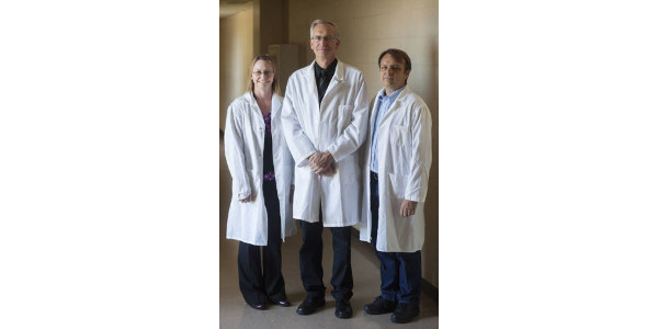 Randy Prather, Curators and Distinguished Professor of Reproductive Biotechnology in the Division of Animal Sciences (center), was part of a group from the University of Missouri that published the first genetically modified pigs made by somatic cell molecular transfer, allowing them to go in and get rid of a gene's function. That served as a big breakthrough for xenotransplantation, which is the process of transplanting organs or tissues between different species. With the base technology and expertise with pigs, Prather and his team made a proposal to NIH in 2003 for a center that would meet the needs that individuals have. Kristin Whitworth (left), a research scientist on Prather's lab team and the project director for NSRRC, and Kevin Wells, an associate professor in the Division of Animal Sciences and co-primary investigator for NSRRC, are also pictured. (Courtesy of University of Missouri)
