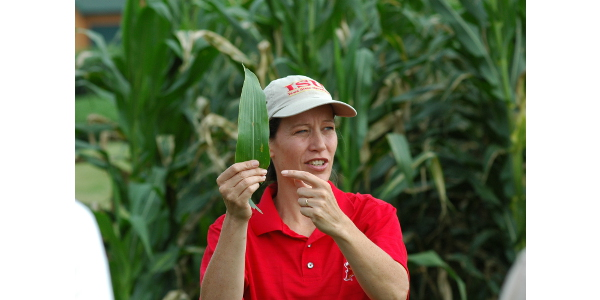 Alison Robertson, professor of plant pathology and microbiology, is a lead researcher for cover crop projects funded by the Iowa Nutrient Research Center. (Photo by Iowa State University)