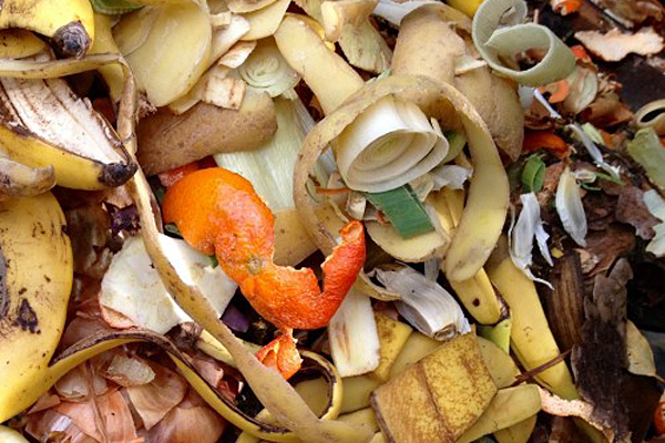To measure food waste, OSU students dig into it