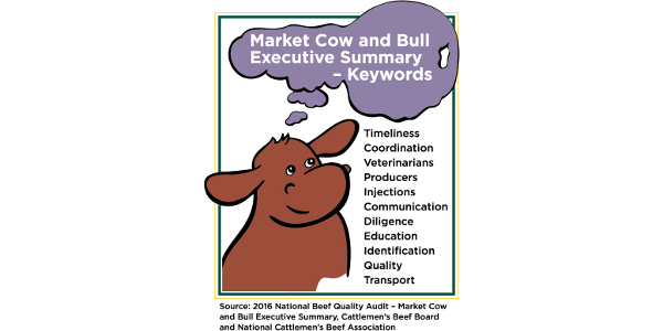 Market Cow and Bull Executive Summary - Keywords. (Courtesy of NDSU)