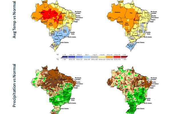 Brazil soybean update
