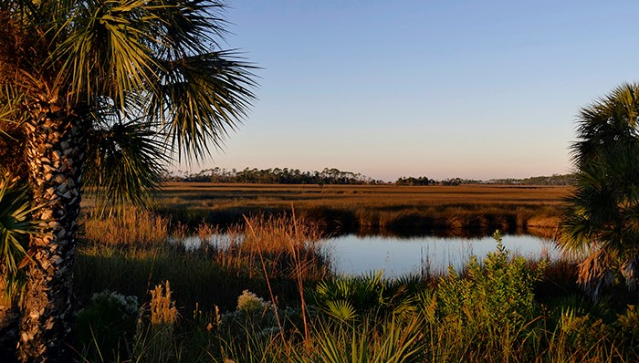 Sign up announced for wetland reserve easements