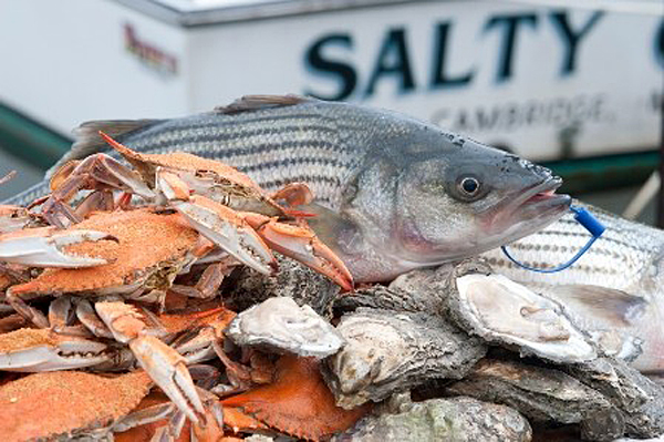 Celebrate Nat'l Seafood Month with Md. seafood