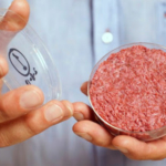 The U.S. Department of Agriculture is currently deciding whether or not to allow lab-cultured protein to be labeled as meat. (Courtesy of The Atlantic)