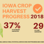 """""""Many farmers were able to get back into their fields this past week, but we still remain well behind the five-year average. The 29 percent of corn harvested is 4 days behind average and the 37 percent of beans harvested puts us 12 days behind,"""" Naig said. (Courtesy of Iowa Department of Agriculture)"""