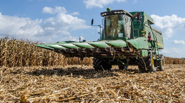 Changing temperatures helping corn -- for now