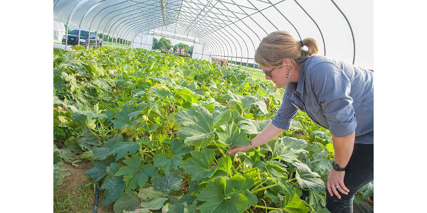 Kentucky Fruit and Vegetable Conference Jan. 7-8