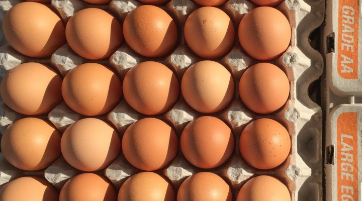California makes cage-free hens a state law