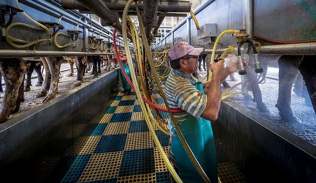 2019 Becker Forum to focus on farm labor