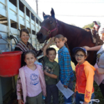The first 4-H SPIN club for Wright County was held as a horse workshop on Oct. 20 with leader Jaci Ferguson. Six youth attended the workshop held in Mountain Grove. (Courtesy of MUExtension417 via Flickr)