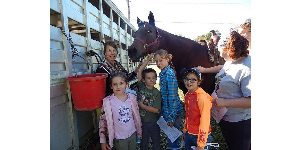 Wright County 4-H hosts youth horse workshop