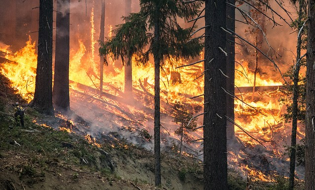 USDA supports CA fire suppression efforts