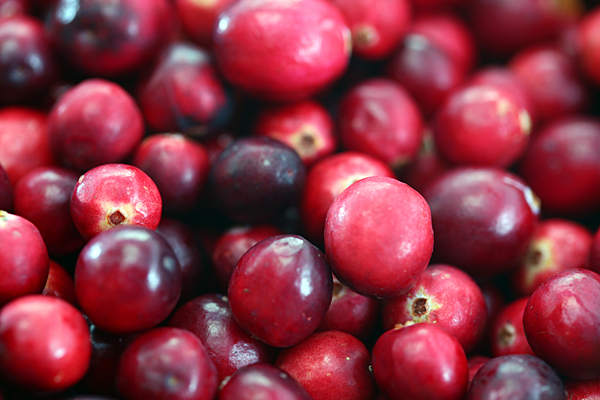 USDA holding referendum for cranberry growers