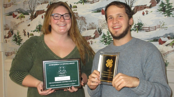 4-H educators earn state, national recognition