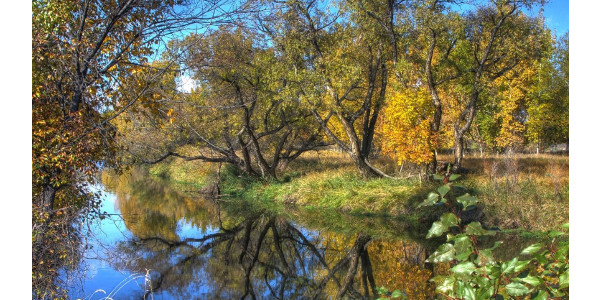 """A variety of people have made major impacts over the years to help support the vision of making the Cache la Poudre River an excellent example of a """"healthy working river,"""" and the Poudre Runs Through It Study/Action Work Group would like to again recognize one of those key contributors. (Courtesy of CSU)"""
