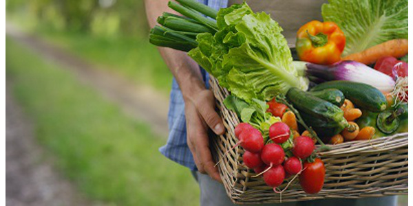 Get answers to fruit and vegetable questions