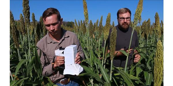 Agricultural intelligence
