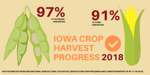 Naig on crop progress and condition