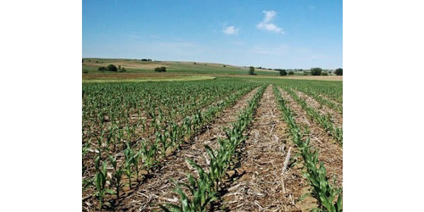 An Iowa State University study that shows the age of Iowa's farmland owners continues to rise is now available through the ISU Extension Store. (Courtesy of ISU Extension and Outreach)