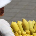 Food demand is set to rise by more than 50 percent by 2050, according to WRI. (© A. Rival, CIRAD)