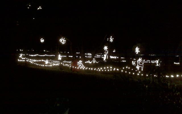Hopeland Gardens Christmas Lights.Christmas In Hopelands Gardens Morning Ag Clips