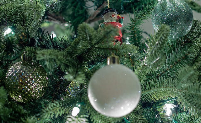 Safety tips for disposing of Christmas trees