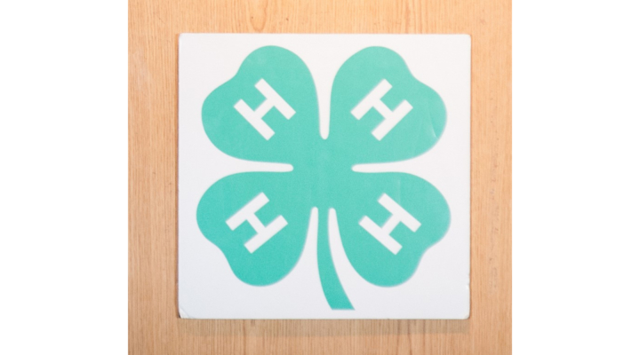 Cornell receives $640,000 grant for 4-H UNITY