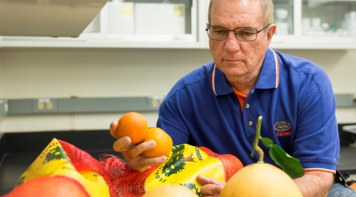 Event combines latest in citrus breeding research