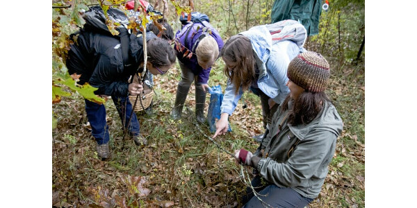 Marie Trest, second from right, explains the 'algal rustling' taking place among the lichen coating a dropped branch. (PHOTO BY ERIC HAMILTON)