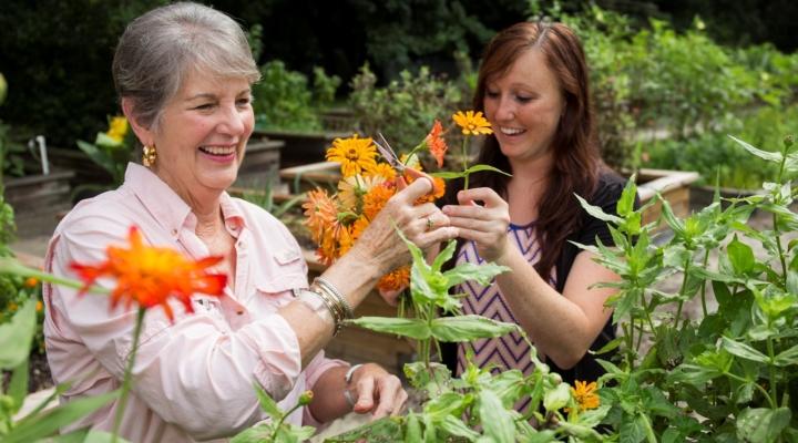 Gardening calendars join top 10 EDIS publications