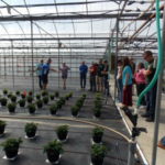 Figure 1. The e-GRO team members and graduate students from around the country touring a western Michigan greenhouse operation. (Courtesy of MSU Extension)