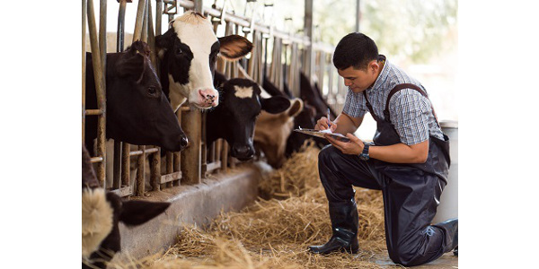 Dairy webinar asks if it's time to visit your lender