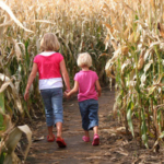 The Iowa State University Extension and OutreachVisit Iowa Farmsprogram is hosting a free one-day workshop in Johnson County dedicated to important health and safety concerns in the agritourism industry. (Rich-Koele/stock.adobe.com)